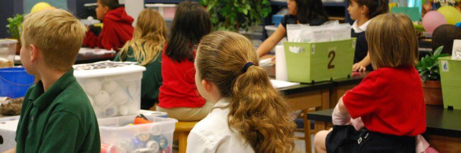 Představení meta-analýzy hodnotící dopad umístění žáků se speciálními vzdělávacími potřebami do škol hlavního vzdělávacího proudu na výsledky jejich spolužáků