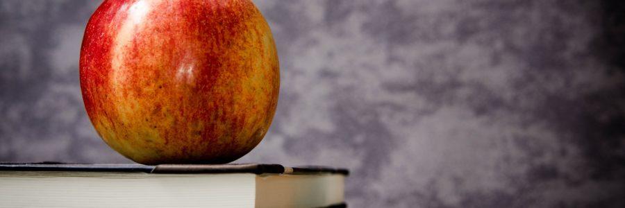 Vzájemnou výměnou zkušeností k inkluzivnímu vzdělávání – projekt